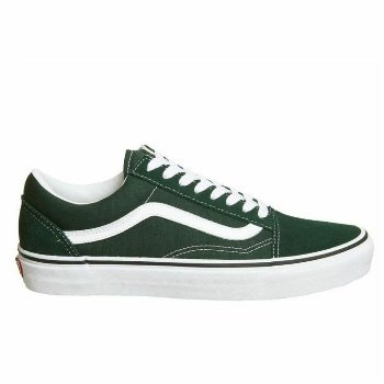 Are Vans Good For Walking